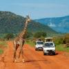 tsavo-national-park-1